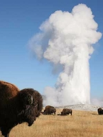 Yellowstone National Park Audio Guide